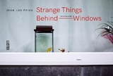 Strange Things Behind Belgian Windows | Jean-Luc Feixa |