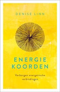 Energiekoorden | Denise Linn |