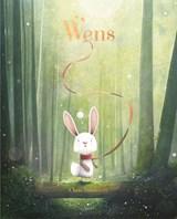 Wens | Chris Saunders | 9789036641265
